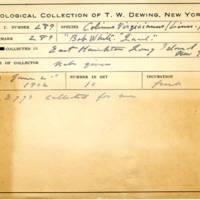 Thomas Wilmer Dewing, egg card # 187