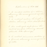 A brief description of nine species of Hepaticae found in the vicinity of Iowa City by Mary F. Linder, 1886, Page 95