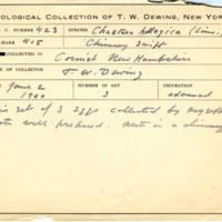 Thomas Wilmer Dewing, egg card # 325