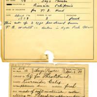 Thomas Wilmer Dewing, egg card # 353