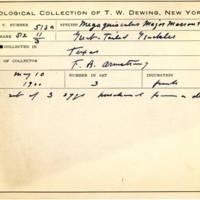 Thomas Wilmer Dewing, egg card # 420
