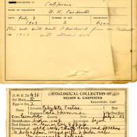 Thomas Wilmer Dewing, egg card # 327