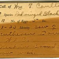 William F. Coultas, egg card # 015