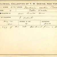 Thomas Wilmer Dewing, egg card # 523