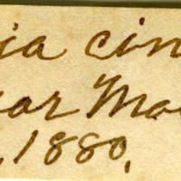 Clinton Mellen Jones, egg card # 428