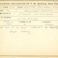 Thomas Wilmer Dewing, egg card # 676u