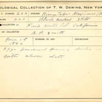 Thomas Wilmer Dewing, egg card # 170