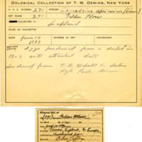 Thomas Wilmer Dewing, egg card # 181