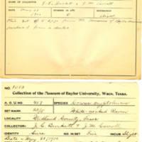 Thomas Wilmer Dewing, egg card # 392