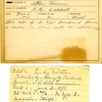 Thomas Wilmer Dewing, egg card # 168