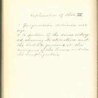 A brief description of nine species of Hepaticae found in the vicinity of Iowa City by Mary F. Linder, 1886, Page 107
