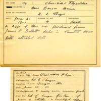 Thomas Wilmer Dewing, egg card # 355