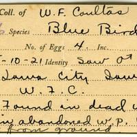 William F. Coultas, egg card # 006