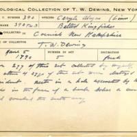 Thomas Wilmer Dewing, egg card # 275