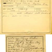 Thomas Wilmer Dewing, egg card # 121