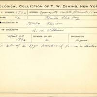 Thomas Wilmer Dewing, egg card # 381