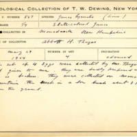 Thomas Wilmer Dewing, egg card # 450
