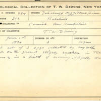 Thomas Wilmer Dewing, egg card # 399