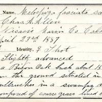 Charles A. Allen, egg card # 005