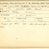 Thomas Wilmer Dewing, egg card # 544