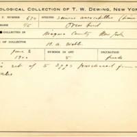 Thomas Wilmer Dewing, egg card # 538