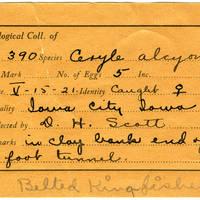 William F. Coultas, egg card # 024