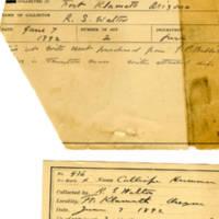 Thomas Wilmer Dewing, egg card # 329