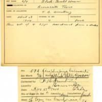 Thomas Wilmer Dewing, egg card # 728u