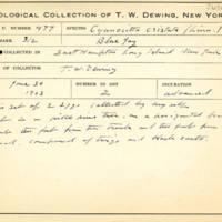 Thomas Wilmer Dewing, egg card # 662u