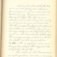 A brief description of nine species of Hepaticae found in the vicinity of Iowa City by Mary F. Linder, 1886, Page 58