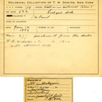 Thomas Wilmer Dewing, egg card # 117