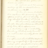 A brief description of nine species of Hepaticae found in the vicinity of Iowa City by Mary F. Linder, 1886, Page 50