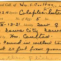 William F. Coultas, egg card # 014