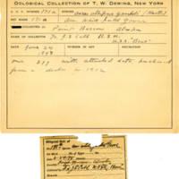 Thomas Wilmer Dewing, egg card # 124
