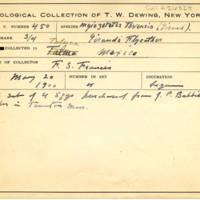 Thomas Wilmer Dewing, egg card # 343