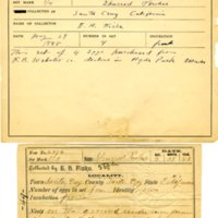 Thomas Wilmer Dewing, egg card # 732u