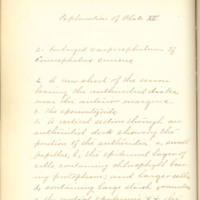 A brief description of nine species of Hepaticae found in the vicinity of Iowa City by Mary F. Linder, 1886, Page 91