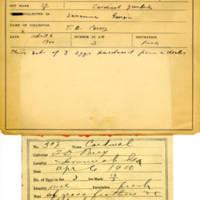 Thomas Wilmer Dewing, egg card # 737u