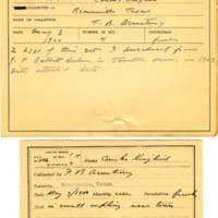 Thomas Wilmer Dewing, egg card # 338