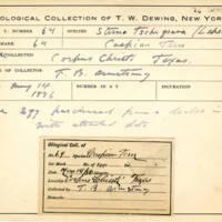 Thomas Wilmer Dewing, egg card # 633u