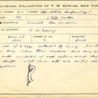 Thomas Wilmer Dewing, egg card # 749u