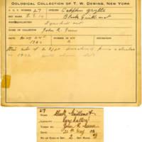 Thomas Wilmer Dewing, egg card # 019